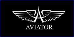 Relojes Aviator