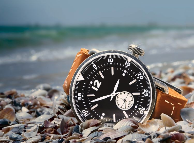 reloj marca hamilton
